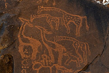 Prehistoric rock carvings, Arakao, Tenere Desert, Sahara, Niger, Africa