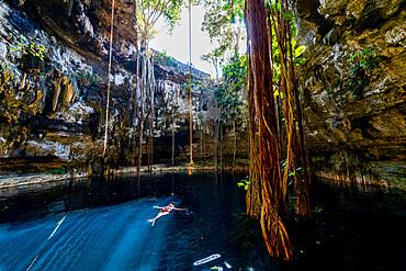 Cenote Oxmal, Valladolid, Yucatan, Mexico, North America