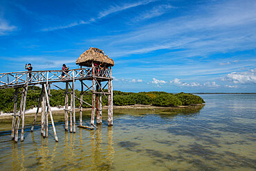 Viewing platform, Holbox island, Yucatan, Mexico, North America