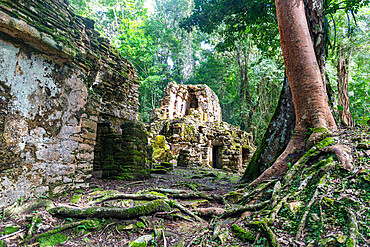 Archaeological Maya site of Yaxchilan in the jungle of Chiapas, Mexico, North America
