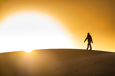 Man walking in backlight on a sand dune, Tenere desert, Niger, West Africa, Africa