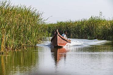 Local boat, Mesopotamian Marshes, The Ahwar of Southern Iraq, UNESCO World Heritage Site, Iraq, Middle East