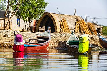 Traditional reed house, Mesopotamian Marshes, The Ahwar of Southern Iraq, UNESCO World Heritage Site, Iraq, Middle East