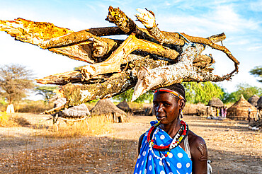 Woman carrying firewood on her head, Toposa tribe, Eastern Equatoria, South Sudan