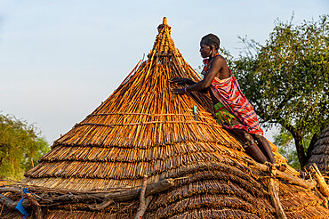 Woman repairing a roof of a traditional build hut of the Toposa tribe, Eastern Equatoria, South Sudan, Africa