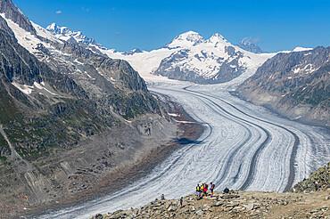 Unesco site great Alteschglacier, Bernese Alps, Switzerland