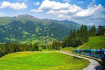 The Jungfrau railway, Grindelwald, Switzerland