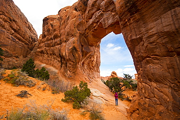Arches National Park, Moab, Utah, United States of America, North America