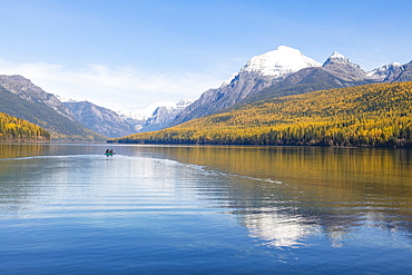 Autumn colours at Bowman Lake, Glacier National Park, Montana, United States of America, North America
