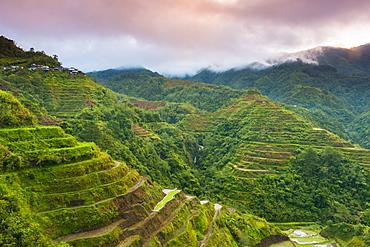 Rice Terraces, Banaue, UNESCO World Heritage Site, Luzon, Philippines, Southeast Asia, Asia
