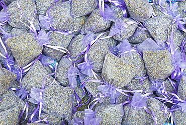 Lavender, Aix en Provence, Bouches du Rhone, Provence, Provence-Alpes-Cote d'Azur, France, Europe