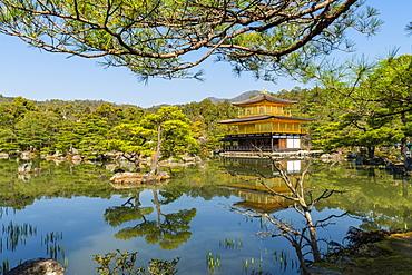 Kinkaku-ji temple, UNESCO World Heritage Site, Kyoto, Japan, Asia