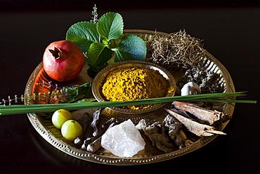 Different Indian spices on display at Swaswara, Karnataka, India, Asia