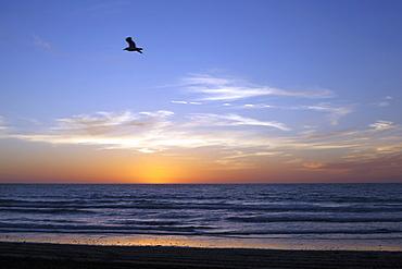 Sunset over La Jolla Coast, California, United States of America, North America