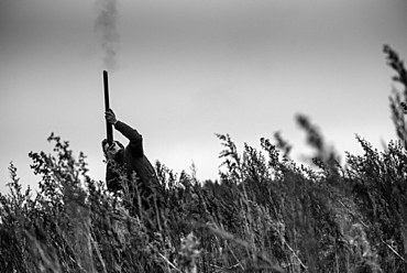 Black and white image of a gun firing at a pheasant flying overhead, United Kingdom, Europe