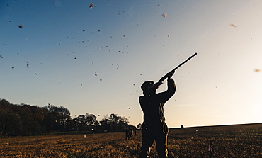 Gun standing in a field with bird feathers falling around him, United Kingdom, Europe
