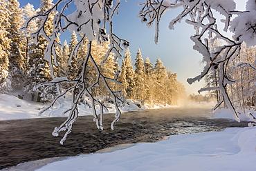 River Kitka (Kitkajoki) in winter, Kuusamo, Finland, Europe