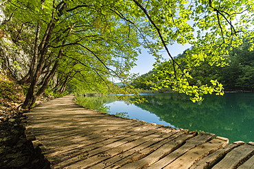 Boardwalk next to lake, Plitvice National Park, UNESCO World Heritage Site, Croatia, Europe