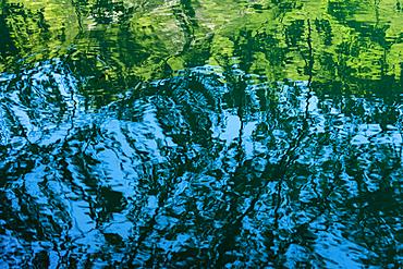 Lake reflections, Plitvice National Park, UNESCO World Heritage Site, Croatia, Europe