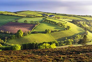 Moor and farmland in spring, Exmoor National Park, Devon, England, United Kingdom, Europe