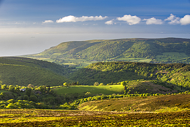 View from Dunkery Hill in spring, Exmoor National Park, Somerset, England, United Kingdom, Europe