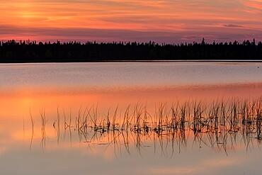 Lake Toras-Sieppi at sunset, Torassieppi, Muonio, Lapland, Finland, Europe