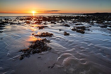 Pools and rocks at low tide, sunrise, Port Eynon Bay, Gower Peninsula, Swansea, Wales, United Kingdom, Europe