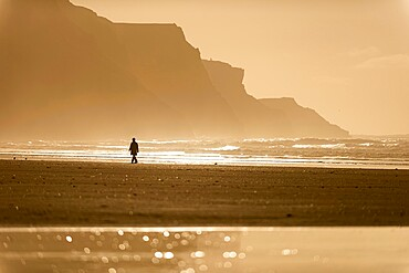 Person walking along beach in the evening sunlight, Rhossili, Gower Peninsula, Swansea, Wales, United Kingdom, Europe