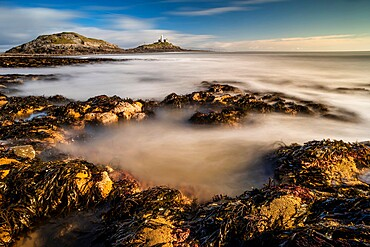 Tidal rock pools and Mumbles Lighthouse, Bracelet Bay, Mumbles Head, Gower Peninsula, Swansea, Wales, United Kingdom, Europe