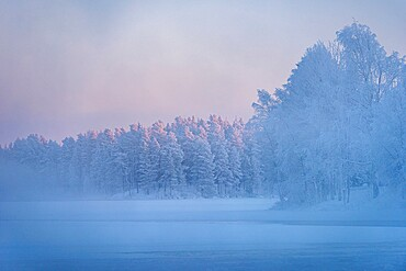 Morning mist over frozen river, River Kitkajoki, Kuusamo, Finland, Europe