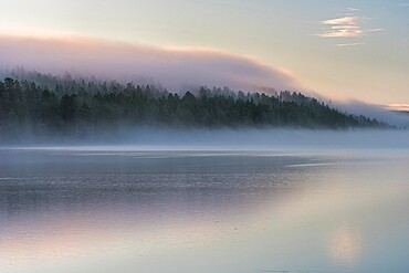 Mist over lake and forest at sunrise, Lake Toras-Sieppi, Muonio, Lapland, autumn