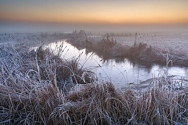 Flooded ditch and frost on coastal grazing marsh, Elmley National Nature Reserve, Isle of Sheppey, Kent, England, United Kingdom, Europe