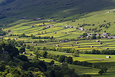 View of stone barns and traditional meadows, Gunnerside, Swaledale, Yorkshire Dales National Park, North Yorkshire, England, United Kingdom, Europe