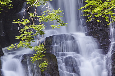 Torc Waterfall, Killarney National Park, near Killarney, County Kerry, Munster, Republic of Ireland, Europe