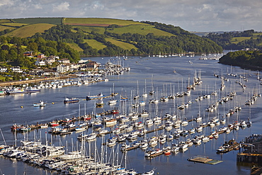 The beautiful south coast of Devon, the estuary of the River Dart at Dartmouth, seen from Kingswear, Devon, England, United Kingdom, Europe
