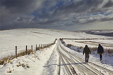 A snowy winter's day on Exmoor's hills, Kinsford Gate, near the village of Brayford, Exmoor National Park, Devon, England, United Kingdom, Europe