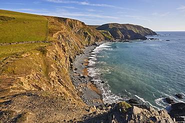 Cliffs along Devon's Atlantic coast bathed in late afternoon sunlight, Hartland Quay, north Devon, England, United Kingdom, Europe