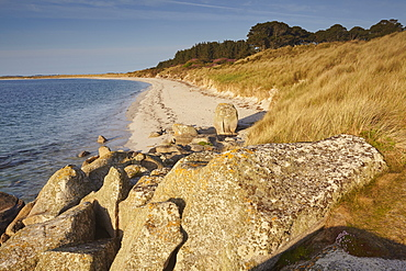 The magnificent sands of Pentle Bay, on the island of Tresco, Isles of Scilly, England, United Kingdom, Europe