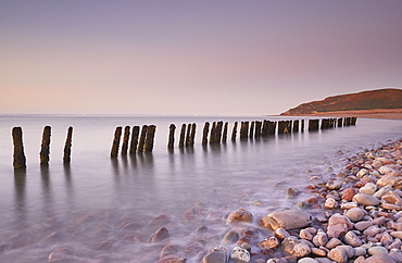 A dusk view of rotting sea defences on the pebble beach at Porlock Weir, near Porlock, in Exmoor National Park, Somerset, England, United Kingdom, Europe