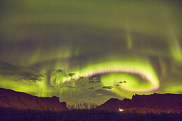 The Aurora Borealis (Northern Lights), seen in the night sky above Vik, on the south coast of Iceland, Polar Regions