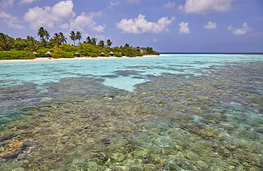 A tropical island fringing reef, just offshore from Havodda island, Gaafu Dhaalu atoll, in the Maldives. Indian Ocean.