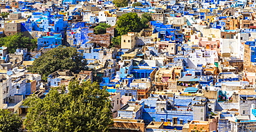 The Blue City in Jodhpur, Rajasthan, India, Asia