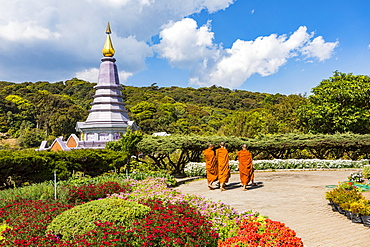 Doi Inthanon National Park, Chiang Mai, Northern Thailand, Thailand, Southeast Asia, Asia