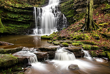 Scaleber Force waterfall, Yorkshire Dales, Yorkshire, England, United Kingdom, Europe