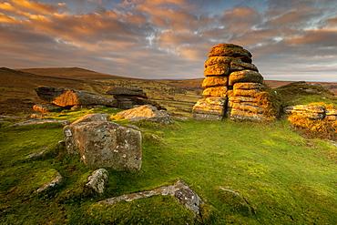 Haytor at sunrise in Dartmoor, England, Europe - 1213-149