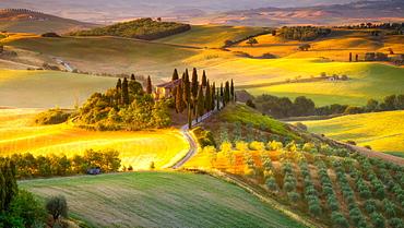 Classic Tuscan landscape at sunrise, Tuscany, Italy, Europe
