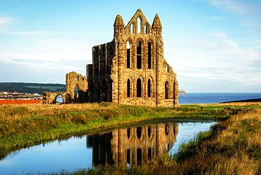Whitby Abbey, Yorkshire, England, United Kingdom, Europe
