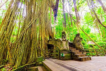 The Sacred Monkey Forest, home to 700 monkeys, Ubud, Bali, Indonesia, Southeast Asia, Asia
