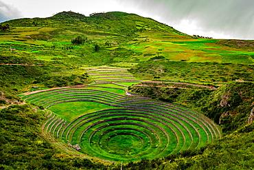 Inca terraces, ruins, Moray, Peru, South America