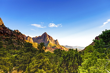 Scenic view in Zion National Park, Utah, United States of America, North America